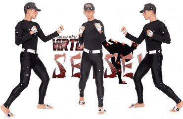 virtual sensei logo
